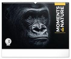 Kalendář 2021 nástěnný: Momenty v přírodě, 48 × 33 cm
