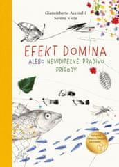 Accinelli, Serena Viola Gianumberto: Efekt domina alebo neviditeľné pradivo prírody