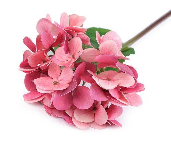 Kraftika 1ks růžová střední umělá hortenzie velkokvětá k aranžování,