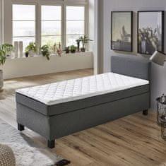 IDEA nábytek nábytek BOXSPRING BX 1480 100x200