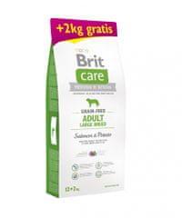 Brit Grain-free Adult Large Breed Salmon & Potato 12 + 2 kg