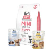 Brit Care Mini Grain Free Puppy Lamb 2 kg + 2x pouch 85g
