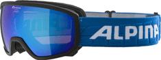 Alpina Sports síszemüveg Scarabeo JR HM, fekete, A7257.8.33