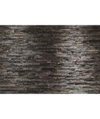 KOMAR Products papírová fototapeta 8-700 Birkenrinde, rozměry 368 x 254 cm