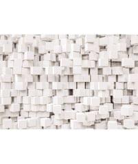 KOMAR Products papírová fototapeta 8-207 Gravity, rozměry 368 x 254 cm