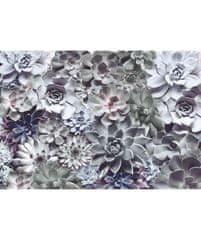 KOMAR Products papírová fototapeta 8-962 Shades, rozměry 368 x 254 cm