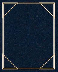 FANDY Fotoalbum samolepicí 24x29 cm 40 stran Vinyl 3 modré