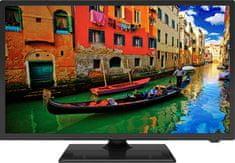 ECG telewizor 24 HS01T2S2