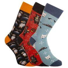 Bellinda 3PACK ponožky vícebarevné (BE491004-308)