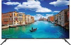 ECG telewizor 50 US01T2S2