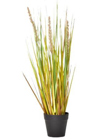 Kraftika Dekoratív fű egy edényben 50 cm