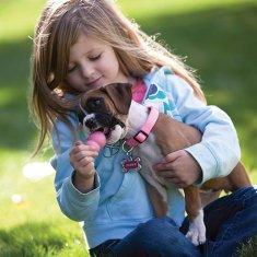 KONG Puppy igračka za pse, S, s rupom