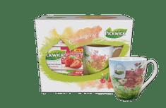 Pickwick Dárkové balení ovocných čajů s hrnečkem JARO