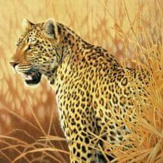 Schmidt Puzzle 1000 Leopard