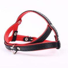 COBBYS PET hám Infinity 35cm/S -fekete/piros