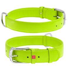 Wau Dog Plochý kožený obojok zelenej farby