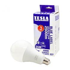 TESLA BL272440-7 LED žarulja