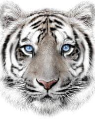 Jerry Fabrics Pléd Fehér tigris