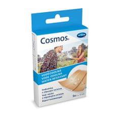 Cosmos Vodeodolná 2 veľkosti 20 ks