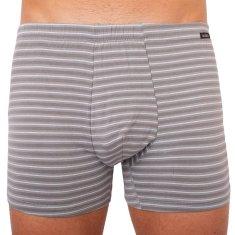 Andrie Pánske boxerky sivé pruhy (PS 5339 C)