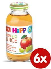 HiPP BIO Jablečno-hroznová šťáva - 6x200ml