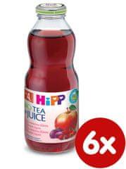 HiPP BIO Nápoj s ovocnú šťavou a šípkovým čajom - 6x0,5l