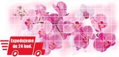 Grace PVC 3D obklad GRACE - ružová Orchidea