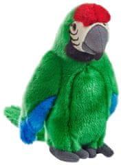 National Geographic Zvieratká z dažďového pralesa 770793 Ara macao zelený