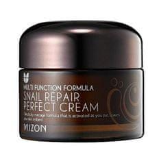 MIZON Pleťový krém s filtrátom hlemýždího sekrétu 60% pre problematickú pleť (Snail Repair Perfect Cream)
