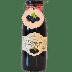 Slaskoukjidlu.cz Borůvkový sirup - tekuté ovoce v lahvi
