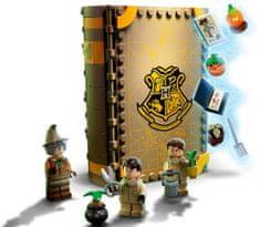 LEGO Harry Potter 76384 Varázslatos pillanatok a Roxfortból: Gyógynövénytan óra