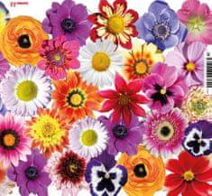 tvorme Blahoprajná zatváracia pohľadnica bez textu s obálkou - p004 (kvety)