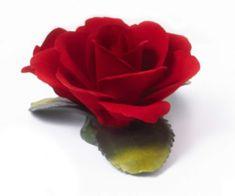 Napoleon ITA Porcelánová ruža + 2 puky 1102-09