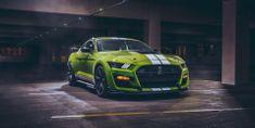 Stips.cz Suprová jízda v Mustangu GT Shelby