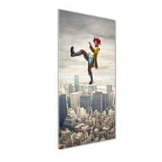 WALLMURALIA Foto obraz akryl do obývačky Šašo na lane 50x125 cm