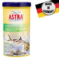 Astra GRÜNFUTTER CHIPS 250ml/110g kompletní krmivo pro tropické ryby žijící na dně akvárií
