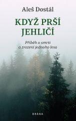 Aleš Dostál: Když prší jehličí
