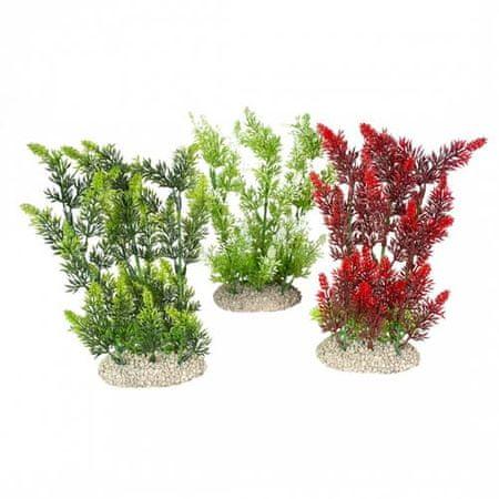 EBI Műnövény ELODEA DENSA 25cm 1db zöld vagy bordó mix s