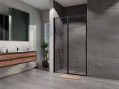 Lansanit Sprchové dveře TADAO Black line 1400 mm, čiré sklo