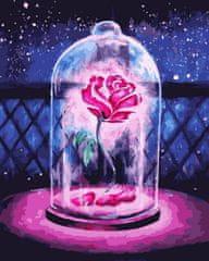 Kouzelný Art Malování podle čísel Růže