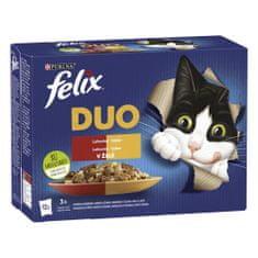 Felix Fantastic DUO kurča a ľadviny, hovädzie a hydinové, morka a pečeň, jahňacie a teľacie 12 x 85 g