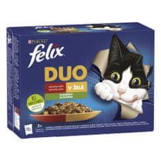 Felix Fantastic DUO hovädzie a hydinové, jahňacie a kura, morka a kačica, bravčové a zverina so zeleninou 12 x 85 g