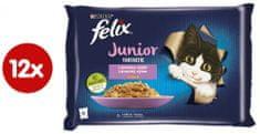 Felix Fantastic Junior csirkehússal és lazacszalettel, zselében 12(4x85g)