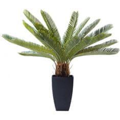 KARE Dekoratívna rastlina Cycas Tree 78 cm