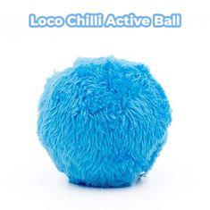LocoShark Igrača za psa (4 barve)