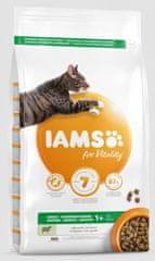 IAMS suha hrana za odrasle mačke, jagnjetina