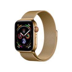 Coteetci Oceľový magnetický remienok pre Apple Watch 38 / 40 mm WH5202-GD, zlatý