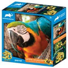 National Geographic Prime 3D sestavljanka papiga, 48 kosov, 31 x 23 cm