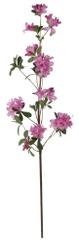 Shishi Azalia różowa 105 cm