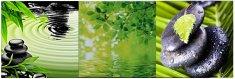 Innova Editions CANVAS GREEN NATUR 20x60